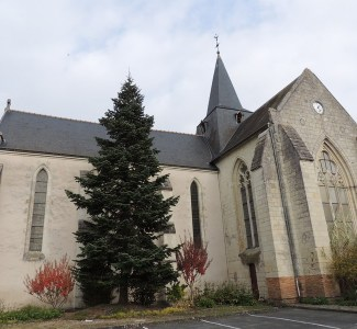 Eglise ST Etienne (8)