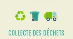 Collecte des poubelles : rythme des ramassages